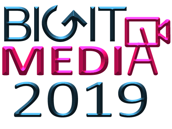 bigitmedia logo ed